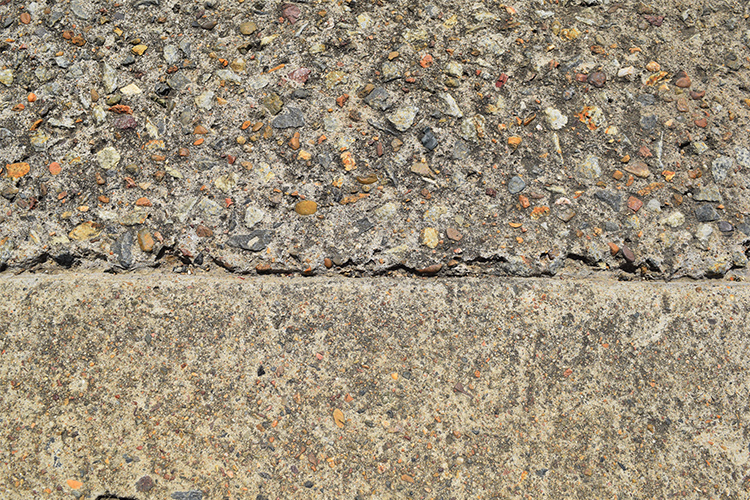 Landscapology_November19.jpg