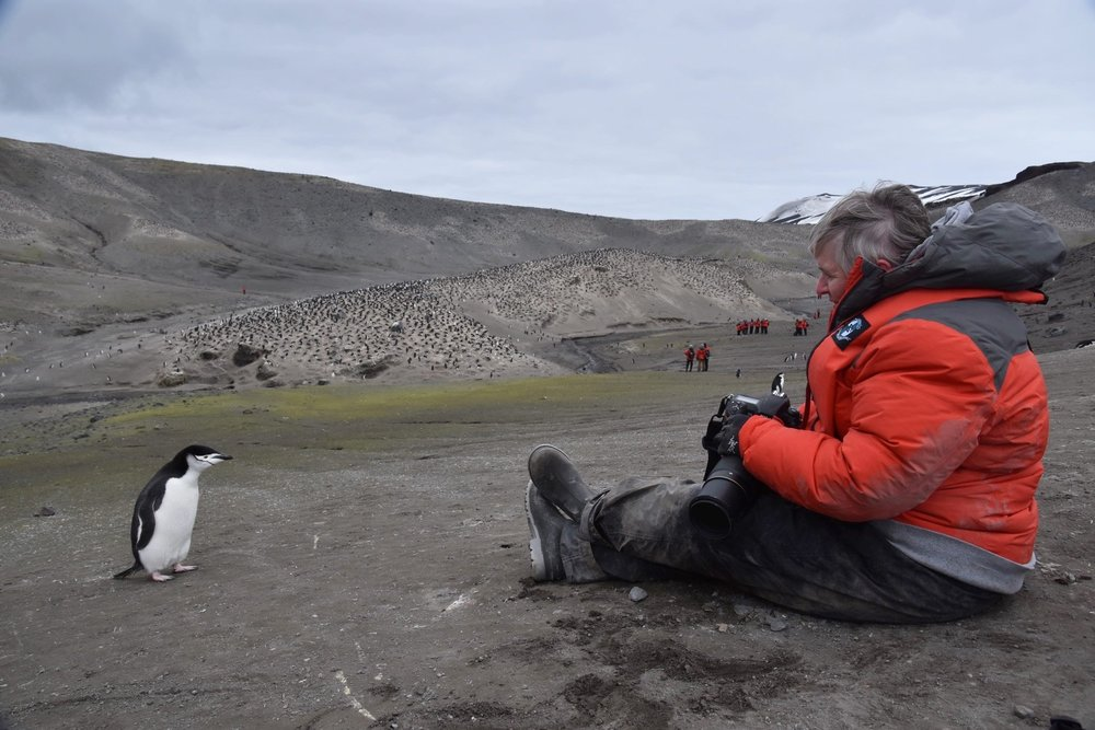 Shelley, having a visit with a chin strap penguin on deception Island in antarctica.