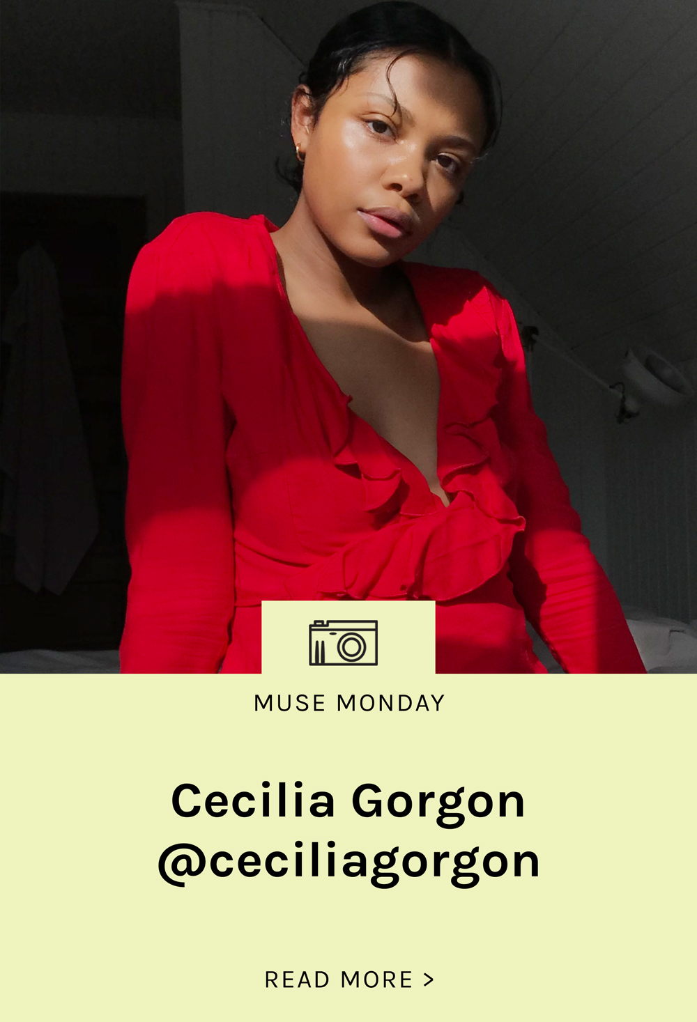 Lisa-Says-Gah-MuseMonday-Cecilia-Gorgon-Landing.jpg