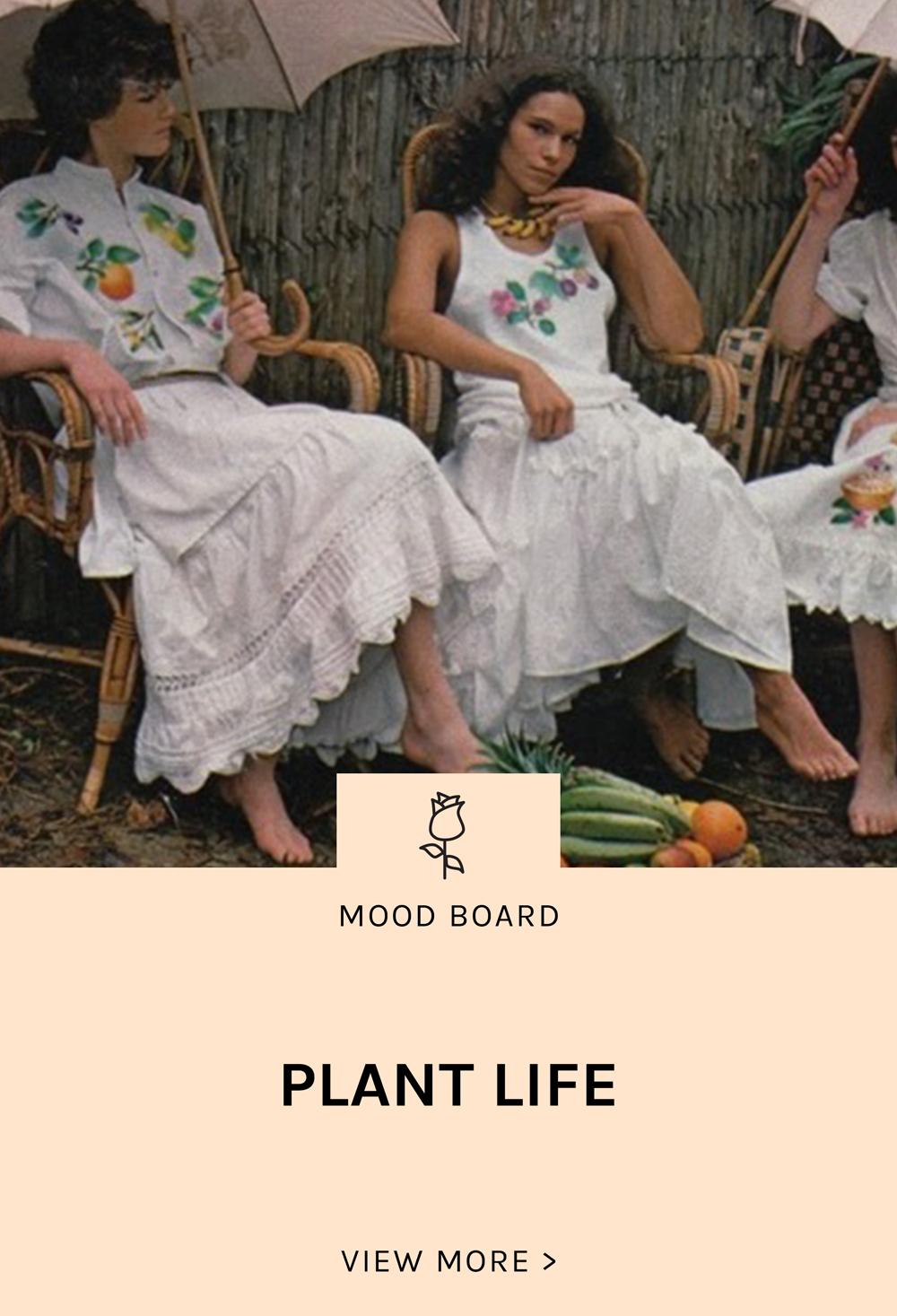 Lisa-Says-Gah-Mood-Plant-Life-Landing.jpg