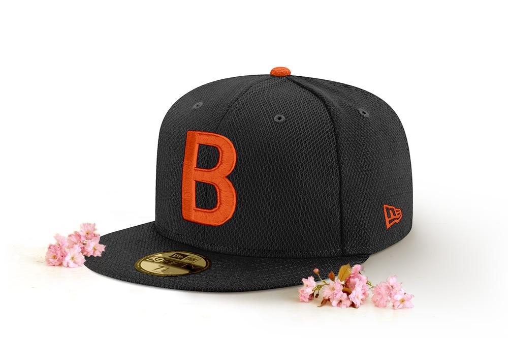2018 ASG Wash_blossoms_BAL.jpg