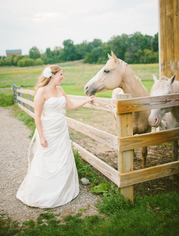 misty-farm-wedding-photography-horses.jpg