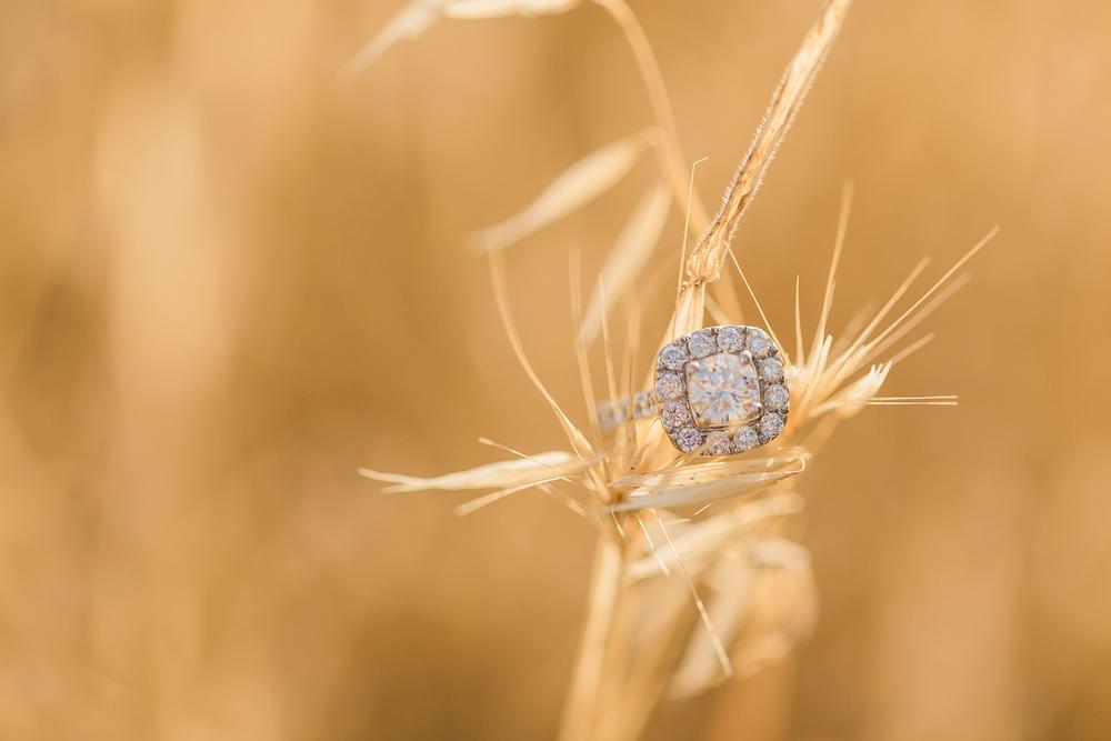 Kristyn Villars Photography-kayleigh cory engagement-12