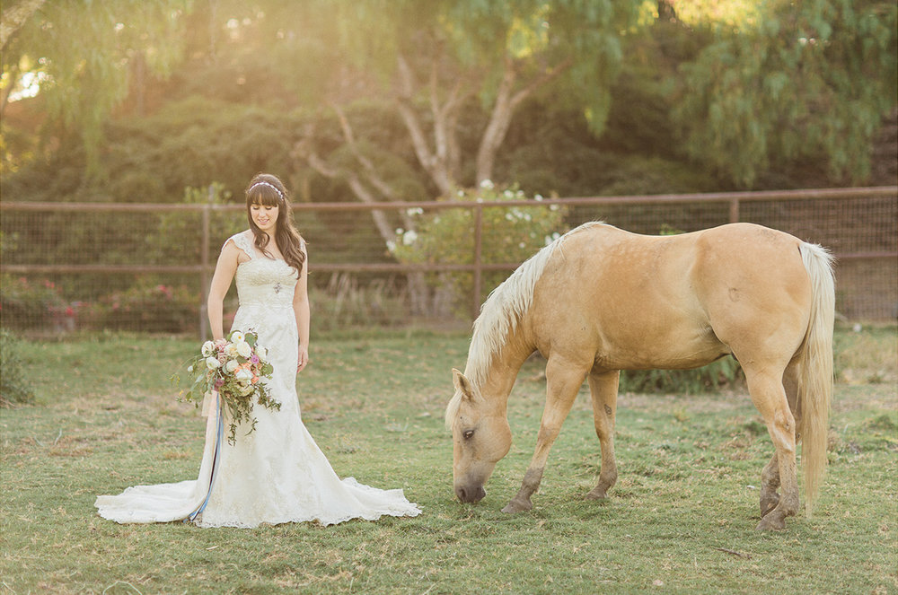 wedding at pepper tree ranch