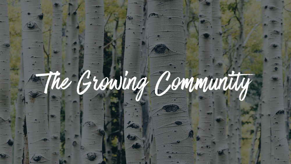 The Growing Community