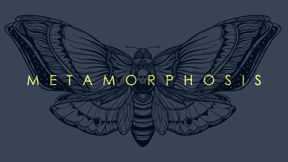 Metamorphosis bulletin cover.001.jpeg