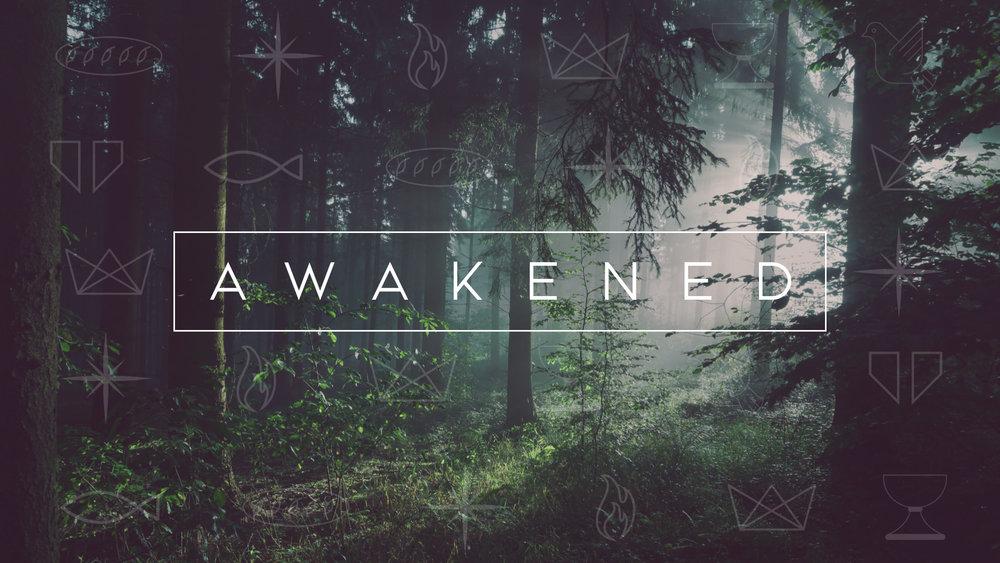 Awakened bulletin cover.001.jpeg