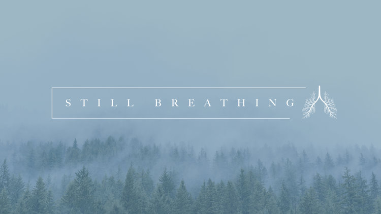 Still+Breathing+bulletin+cover.001.jpeg