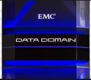 Data_Domain_logo.PNG