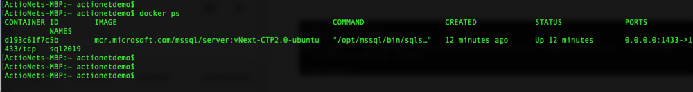 Docker_PS_command_SQL_2019.png