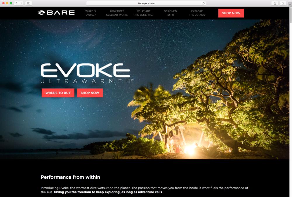 landing page of Evoke microsite
