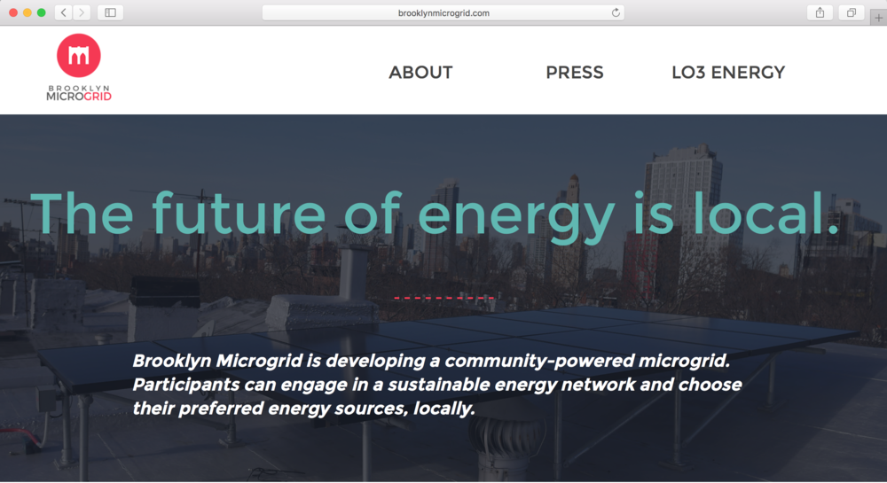 Brooklyn Microgrid landing page with campaign line