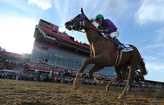 California Chrome so far has looked dominant in the first two stops of the Triple Crown, but now he must run in the long race at the BIG TRACK in NY. (    Bill Frakes/SI)