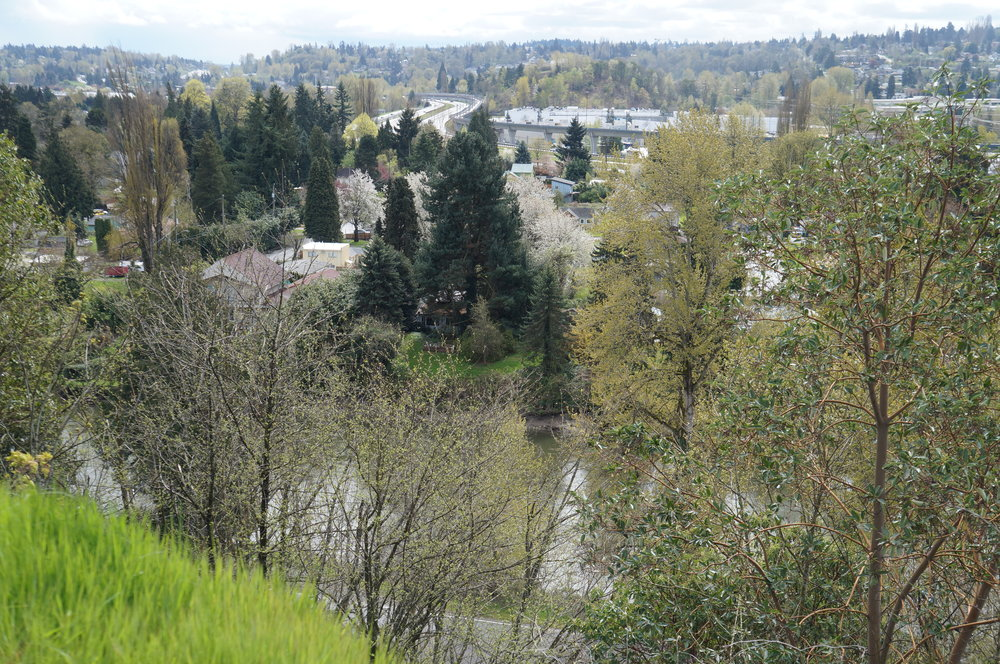 duwamish hill preserve view