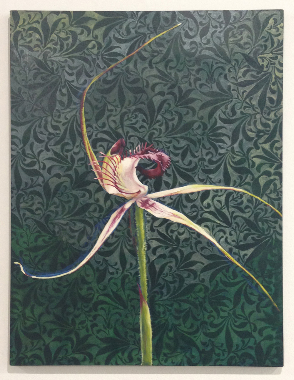 1. Clare McFarlane,  Caladenia  2013, acrylic and aerosol on canvas, $6,000