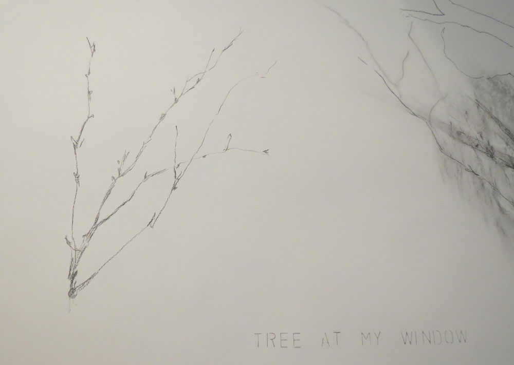 3 Andrea Wood,  Tree at my window Window tree  (Detail), work in progress