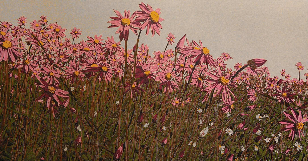 24. Helen Clarke,  Everlastings , reduction linocut, $1020