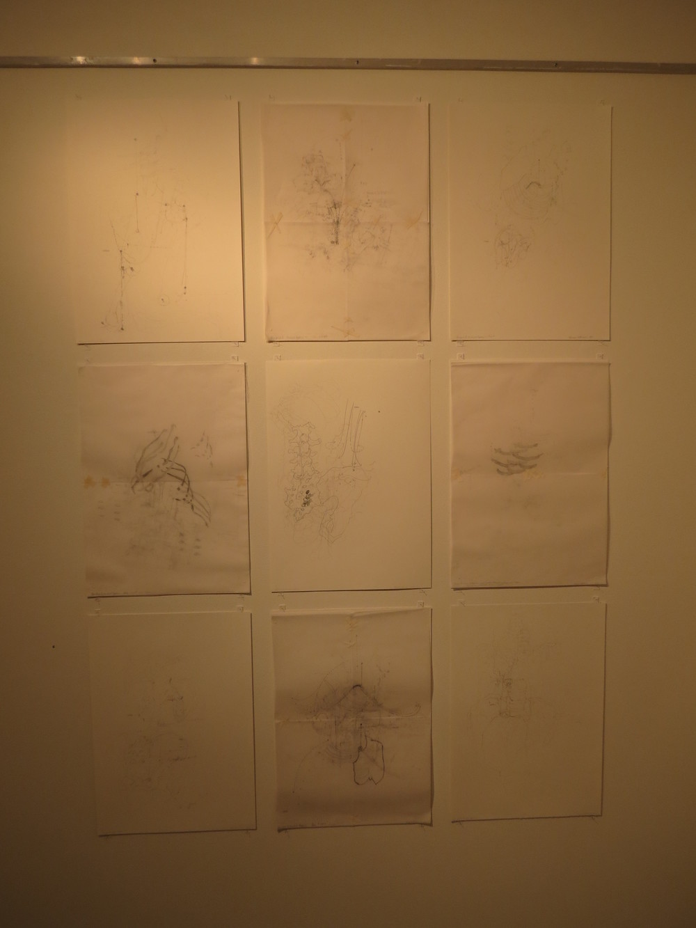 6. Shannon Williamson,  Grid 2 , pencil, masking tape, drawing and tracing paper, $450 each