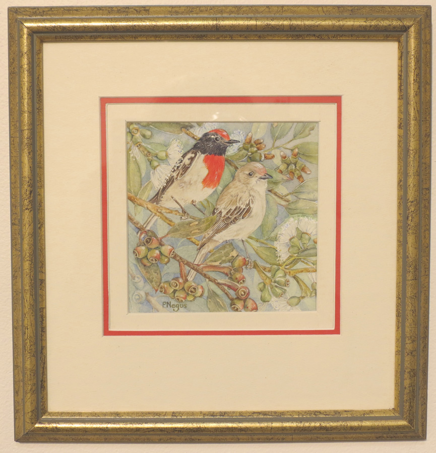 66.  Red Capped Robins with Coastal Moort  by Patricia Negus, watercolour, $300