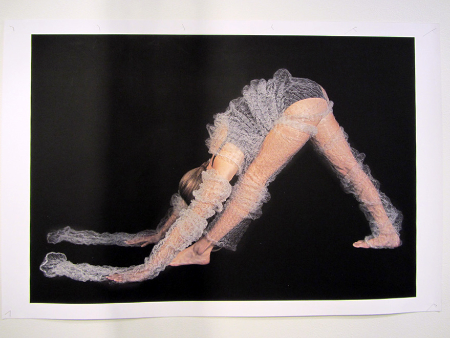 18.  Meditation on Form  by Anne Farren photographic image on canvas (5) phot. Richard Jefferson $615