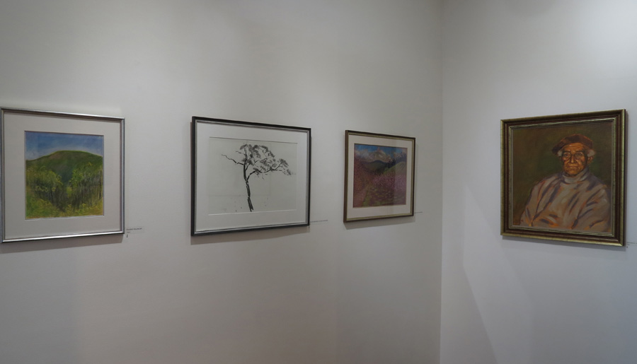 Being Here , gallery view - early works