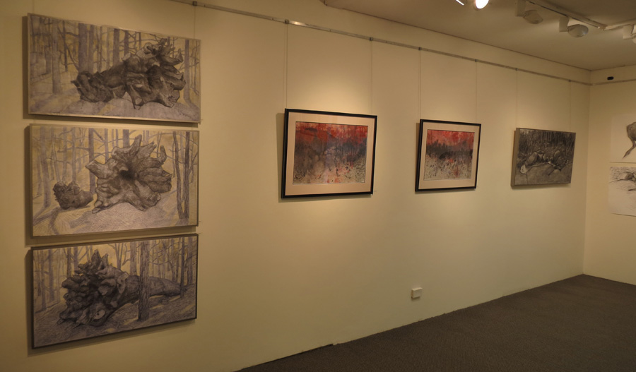 Being Here , gallery view - north