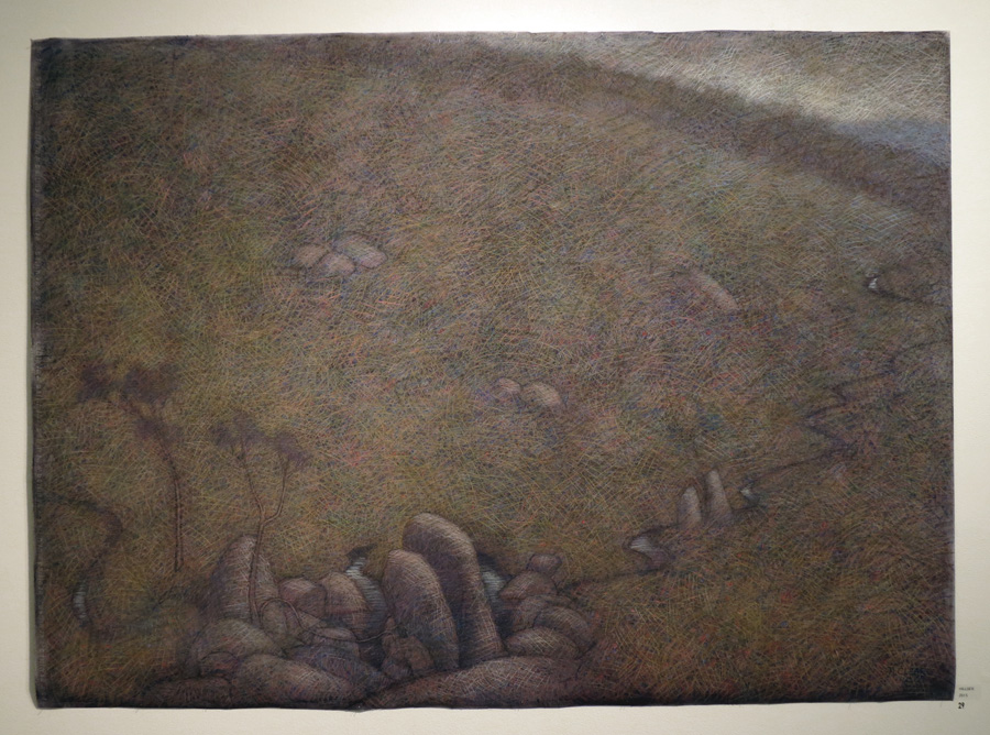 29. Madeleine Clear,  Hillside , pastel on Canson paper (unframed), 2015, $4,400