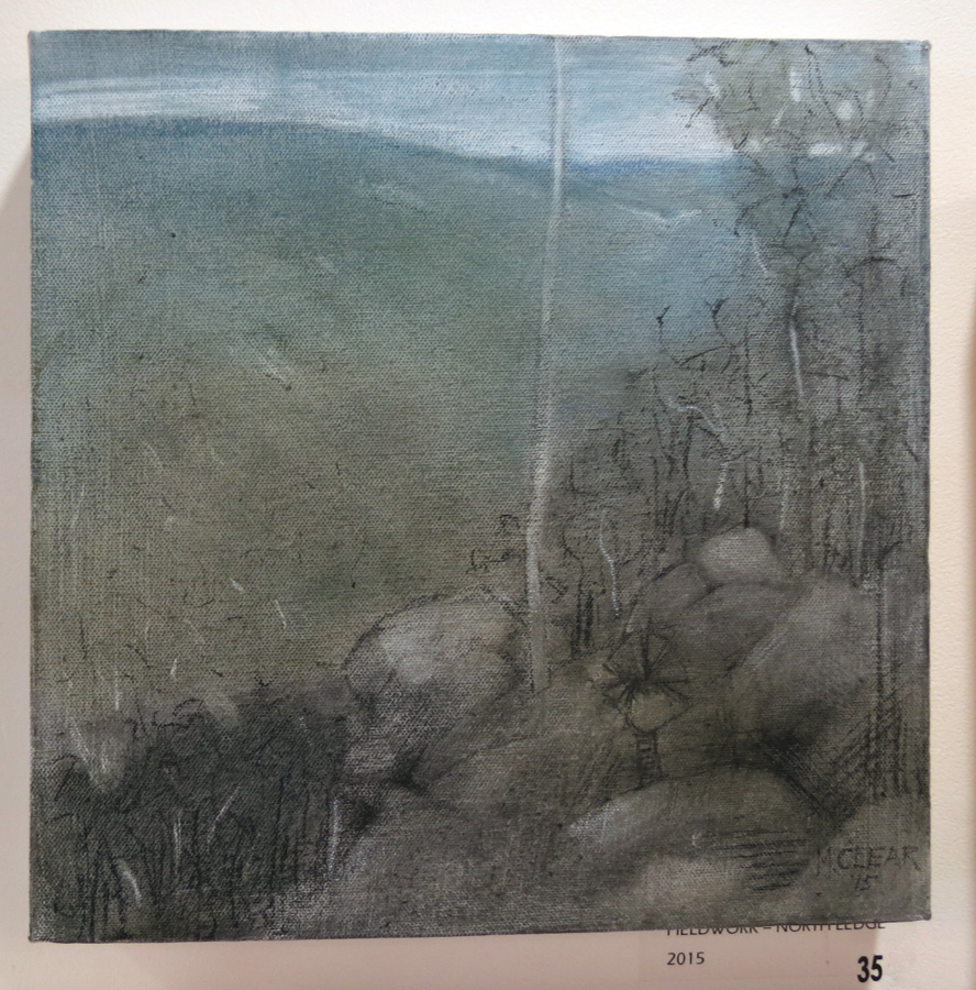 35. Madeleine Clear,  Fieldwork - North Ledge , coloured graphite, charcoal on canvas, 2015, $660