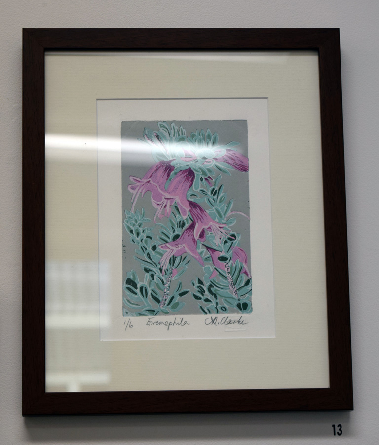 13. Helen Clarke, Eremophila , 1 of 6, linocut $200