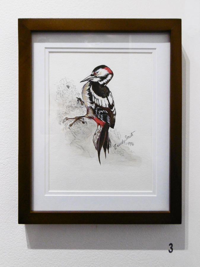 3. 'Bird 2', Trudy Smith, watercolour on paper, Private Collection