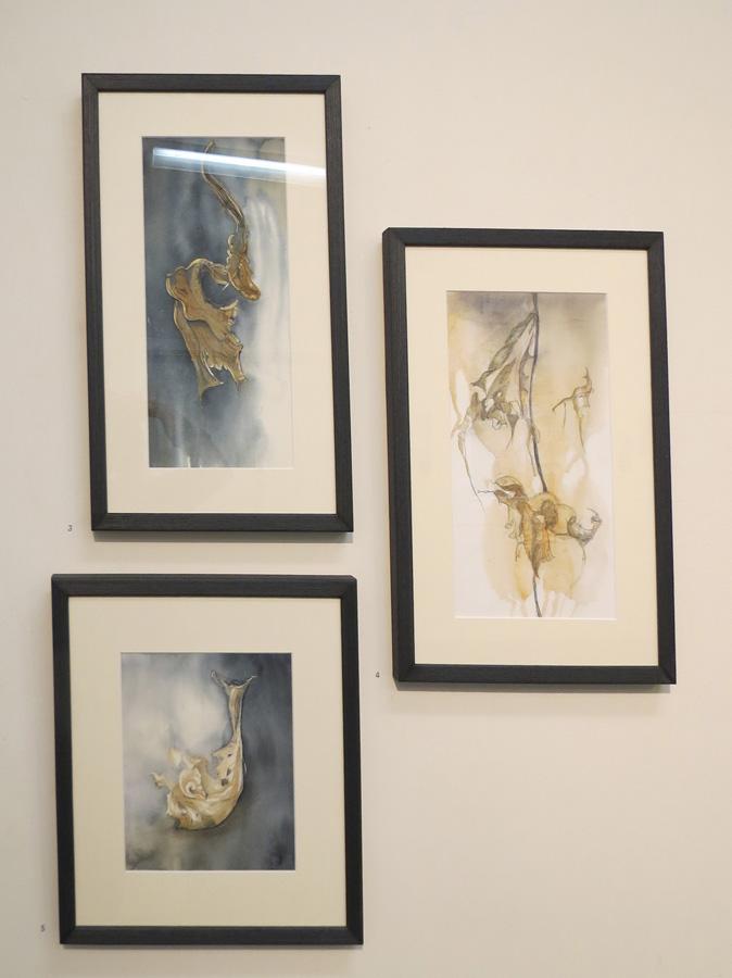 3. 'Into the Unknown', Caroline Lyttle, watercolour and ink, $450  4. 'A Fleeting Moment', Caroline Lyttle, watercolour and pencil, $450  5. 'Seeing Life in Decay', Caroline Lyttle, watercolour and pencil, $430