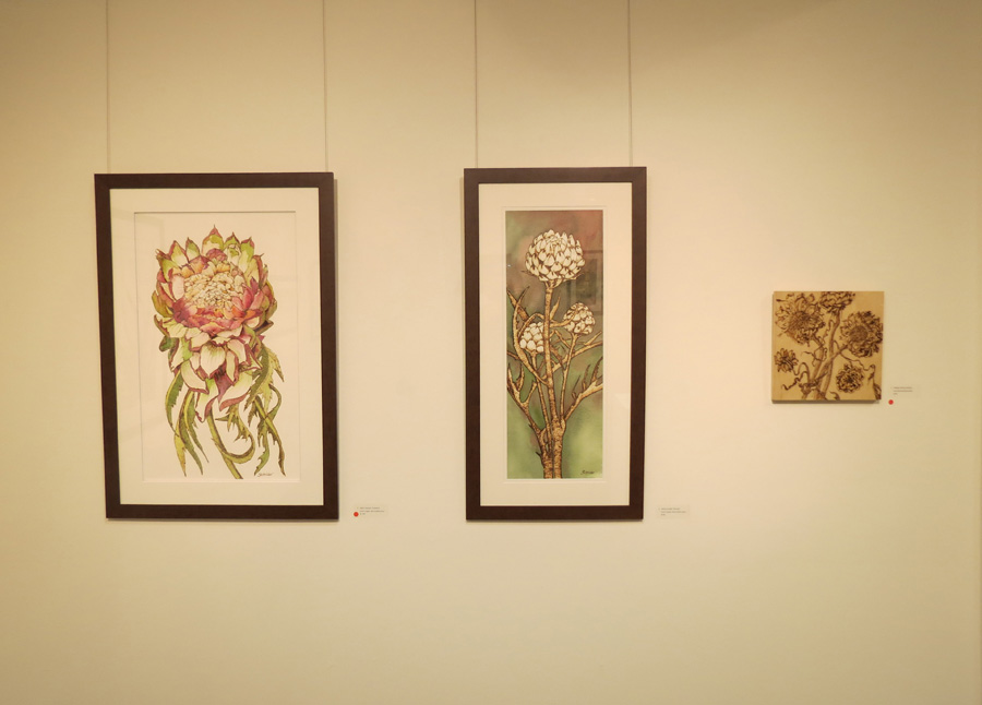 7. 'Artichoke Flower', Sandie Schroder, burnt paper and watercolour, $1,250  6. 'Artichoke Heads', Sandie Schroder, burnt paper and watercolour, $750  5. 'Dried Artichokes', Sandie Schroder, burnt Birchwood panel, $400