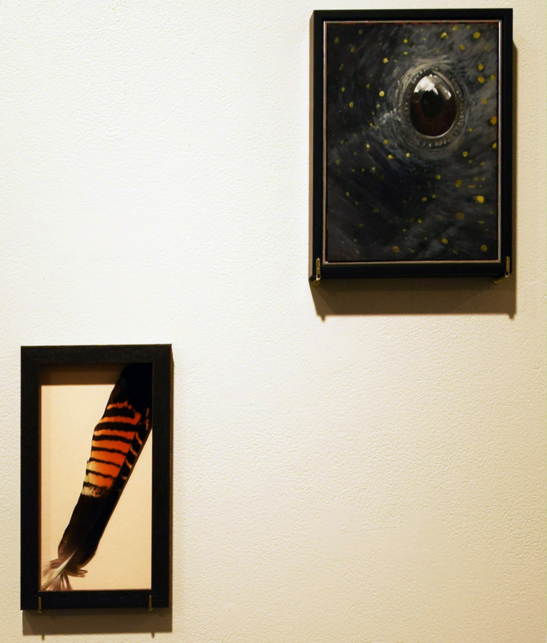48. David Small, 'Found Object', feather  48. David Small, 'Eye of the Beholder', oil on ply