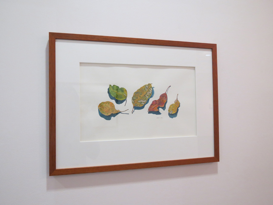 47. 'Leaf Portraits B', Sarah Thornton-Smith, watercolour on paper, $380
