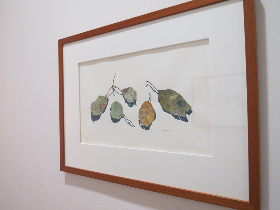 48. 'Leaf Portraits A', Sarah Thornton-Smith, watercolour on paper, $380