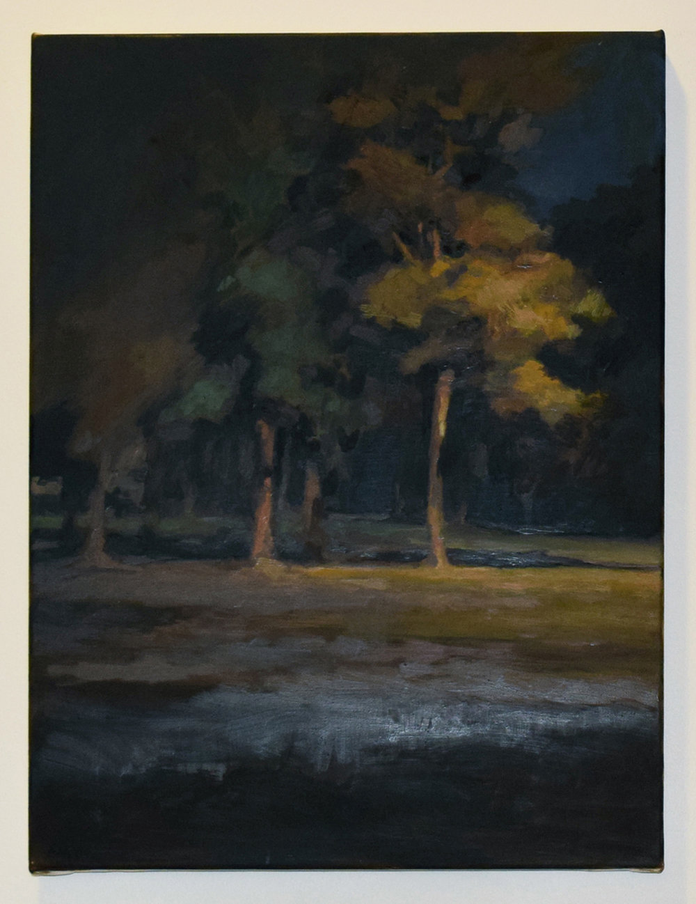 30. Gina Moore, 'Park at Night', 2007, oil on linen, NFS