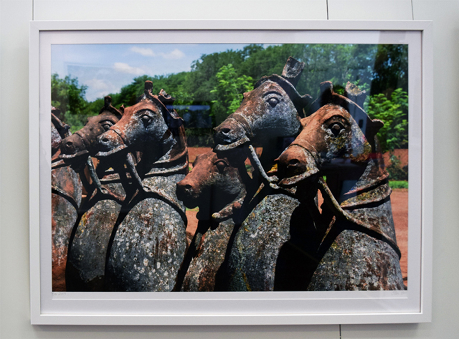 19. Clare Arni, Untitled (Horses in Place), 50 x 76 cm unframed, $990