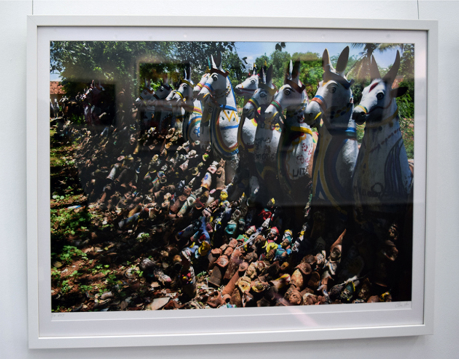 21. Clare Arni, Untitled (Horses in Place), 50 x 76 cm unframed, $990