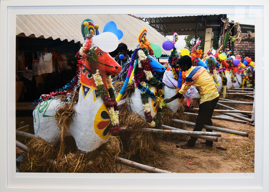 27. Clare Arni, Untitled (Horses in Place – Horses being decorated before parade), 50 x 76 cm unframed, $990