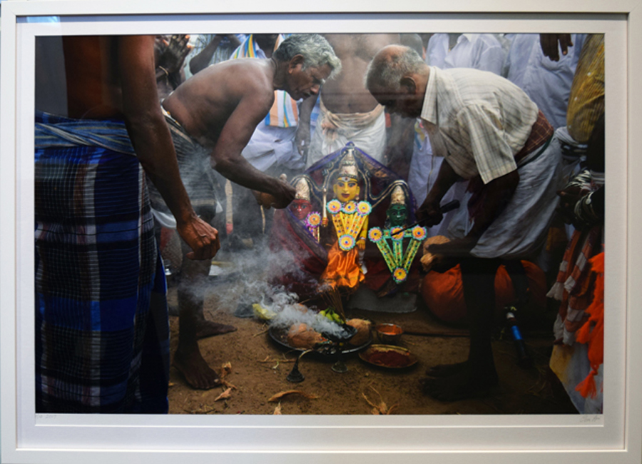 28. Clare Arni, Untitled (Horses in Place – Kasirajan and others with figures he has made as offerings to the gods), 50 x 76 cm unframed, $990