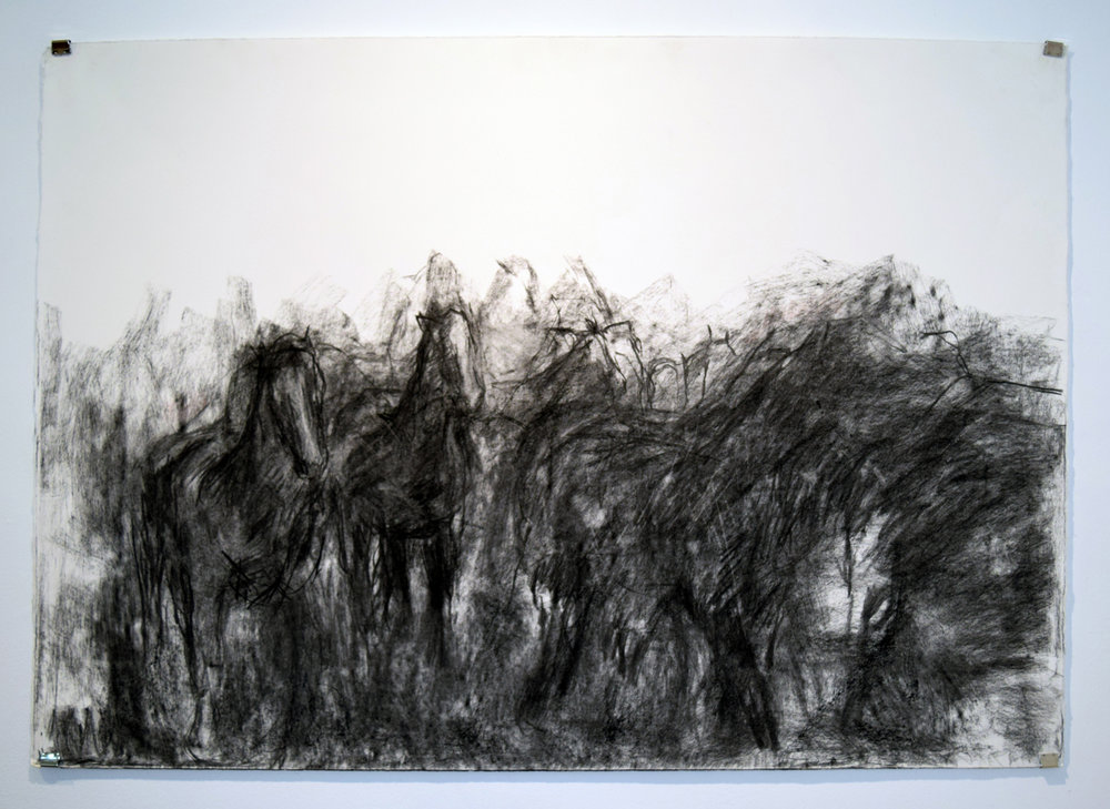 4. Angela Stewart, Equine 1915 - III, charcoal on paper, 2014, 77 x 108 cm, $800