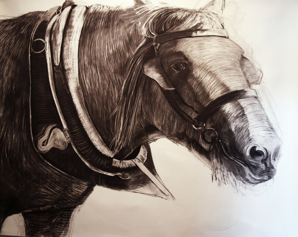 17. Linda van der Merwe, Harnessed I, charcoal on acid free paper, 1995, 149 x 180 cm, $800