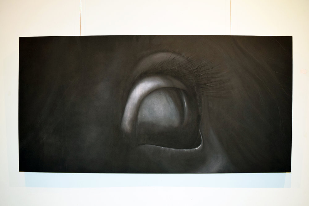 20. Daniela Dlugocz, Equinophobia, charcoal on masonite, 2017, 60 x 120 cm, $1,690