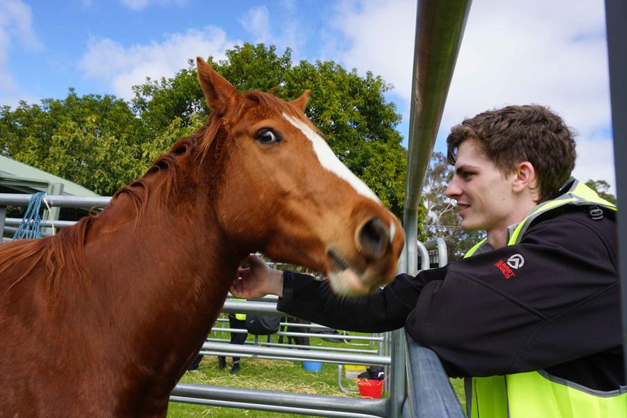 Volunteer jake with horse.jpg