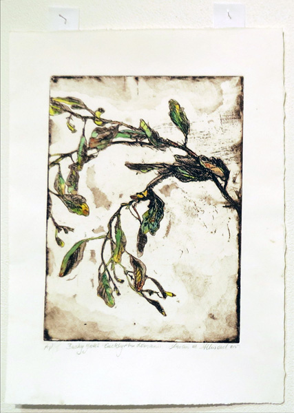 5. Bushy Yates, Susan Allwood, 2016-17, Softground etching with aquatint and hand-colouring, AP, $310