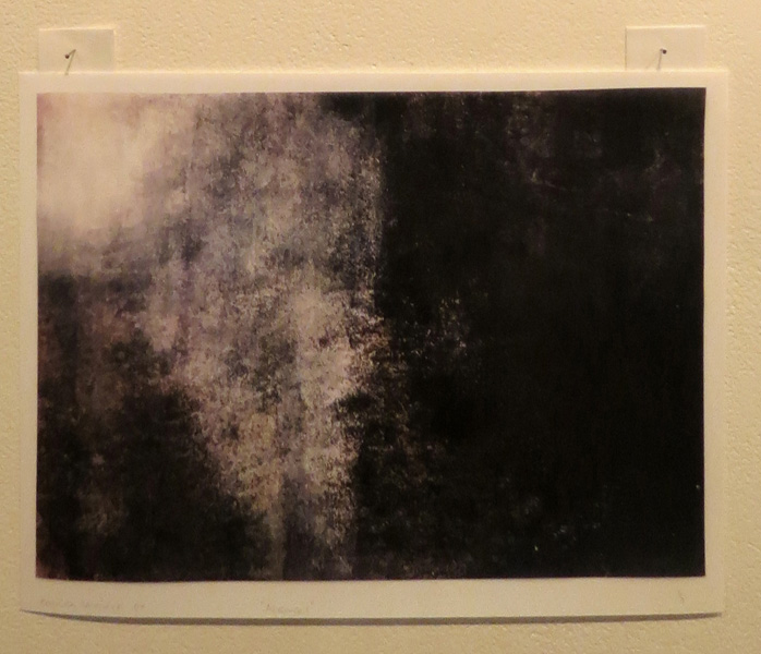 18. Absence 1, Camilla Loveridge, 2017, Ink jet print of a ghost print taken using eucalyptus oil on synthetic silk, 1 of 5, $80