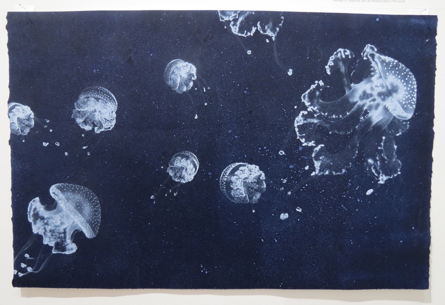 4. Ocean Drifters, Diane Masters, Carborundum and solar plate etching, AP, Image size 38 x 57.5cm paper size 38 x 57.5cm, edition available from PCA