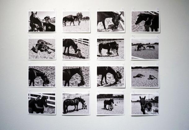 7. Matt McVeigh, A Horse on Course (2).jpg