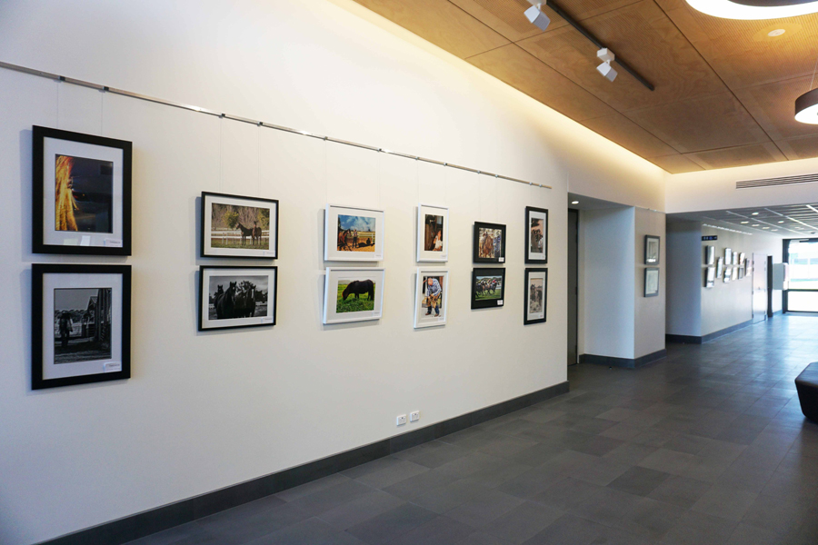 Photography%20exhibition.jpg