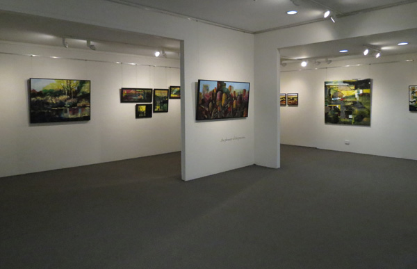 Karen Frankel,  Drawn , Gallery View
